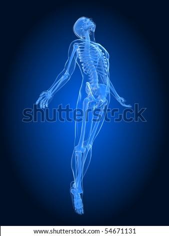male body rising - stock photo