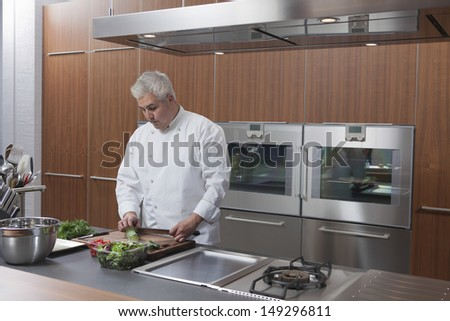 Male chef chopping vegetables in commercial kitchen - stock photo