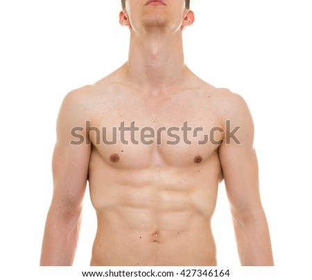 Male Chest Anatomy Man Muscles Front Stock Photo Royalty Free