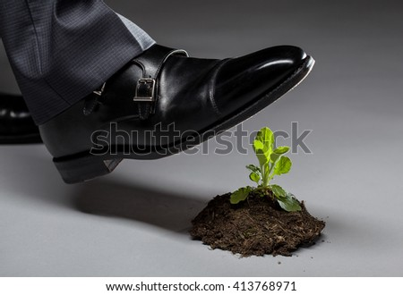 Male foot in black shoe trampling a young sprout, gray background