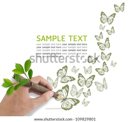 Male hand drawing butterfly on white background. - stock photo
