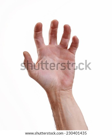 Male hand isolated on white background.Human hand on white background.