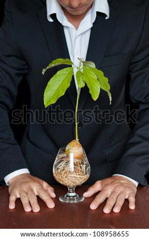 male in a suit with a new avocado plant thinking about different life forms and legal rights - stock photo