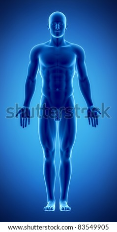 Male in anatomical position in x-ray view - stock photo