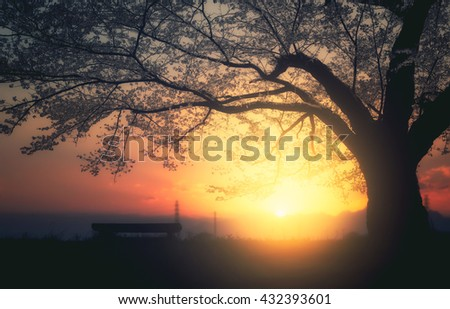 Male teenager Sitting alone on a bench in the park under a tree . - stock photo
