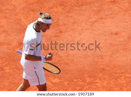 Male Tennis Player - stock photo
