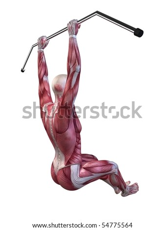 male workout - hanging leg raises