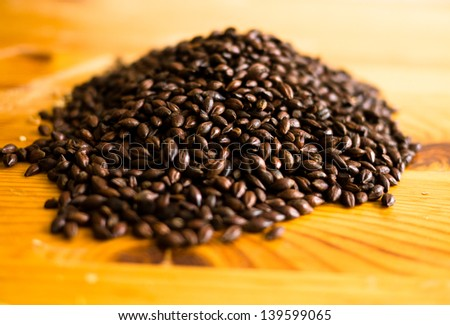 Malt for beer brewing - stock photo