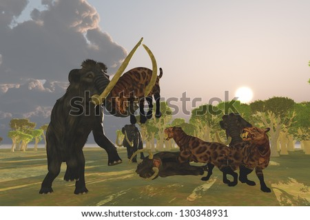 Mammoth and Saber Tooth Cat - A pack of Saber Tooth Cats attack a small Woolly Mammoth while his herd comes to the rescue. - stock photo
