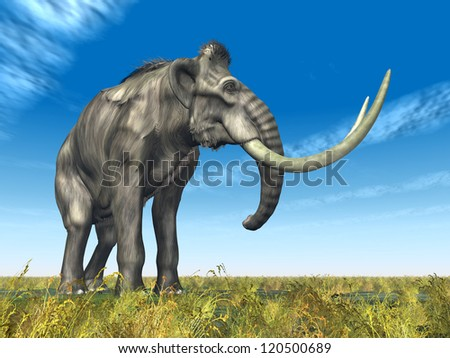 Mammoth Computer generated 3D illustration