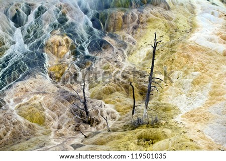 Mammoth Hot Springs Detail, Yellowstone National Park - stock photo