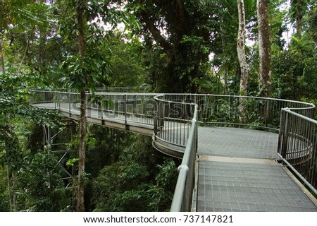 Mamu Rainforest Canopy Walkway in Australia & Mamu Rainforest Canopy Walkway Stock Images Royalty-Free Images ...