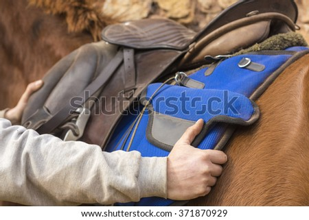 Man adjusting the saddle on his horse. Foreground. - stock photo