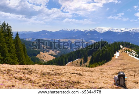 man admire views of the mountains in spring - stock photo