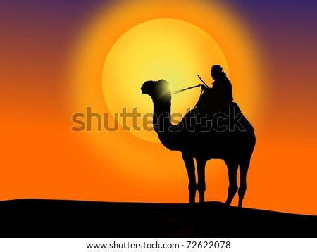 Man and camel at sunset. - stock photo