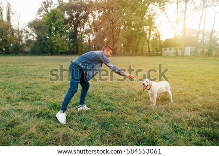Man and dog Labrador have fun playing in ball at sunset
