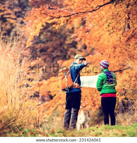 Man and woman hikers hiking in autumn colorful forest with akita dog. Young couple looking at map and planning trip or get lost, vintage retro instagram style photo - stock photo