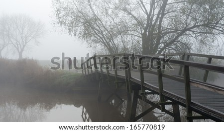 Man and woman walking with the dogs in a foggy Dutch landscape. - stock photo