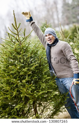 Man at cut your own Christmas tree farm showing tall spruce - stock photo
