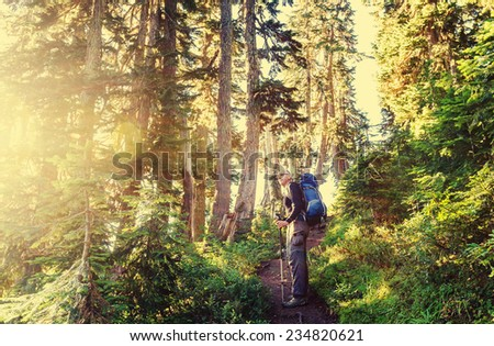 man backpacker in forest