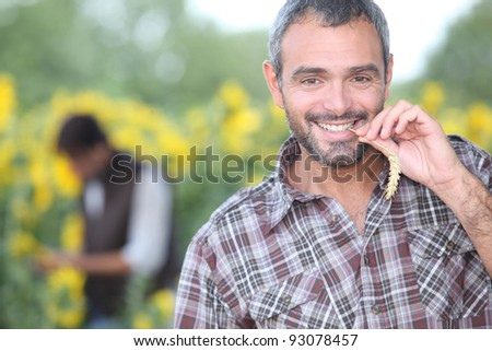 man chewing on corn - stock photo
