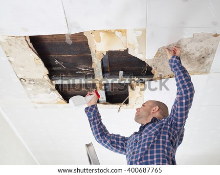 man cleaning mold on ceiling.Ceiling panels damaged  huge hole in roof from rainwater leakage.Water damaged ceiling . - stock photo