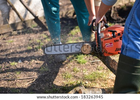 Man cuts tree with chainsaw, concept of deforestation. Selective focus - stock photo