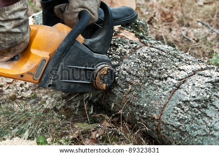 man cuts wood with electric saw in the wood - stock photo
