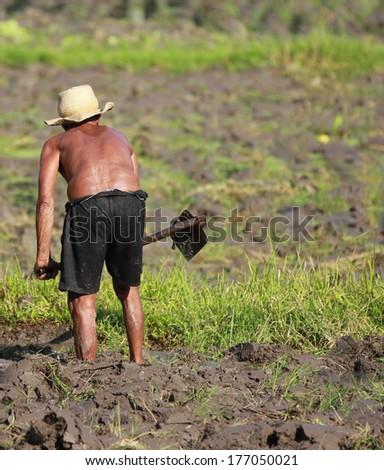 Man Farming - stock photo
