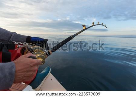 man fishing on a big game fishing trip - stock photo