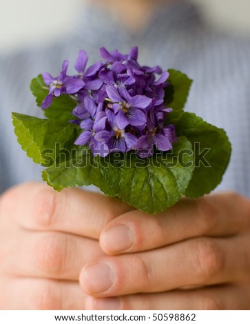 Man give her a bouquet of sweet violets - stock photo