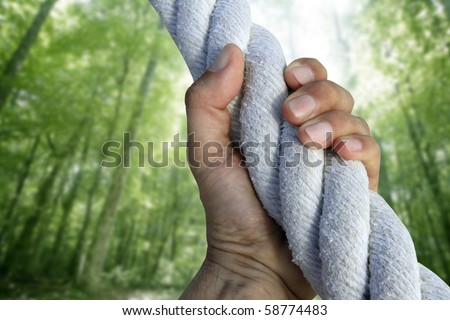 man hand grab grip strong climbing to green forest tree big rope [Photo Illustration] - stock photo