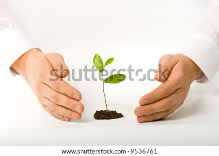 man hands with plant business concept