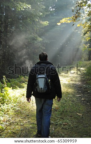 Man hiking in a foggy forest with light rays shining on a dirt path. - stock photo