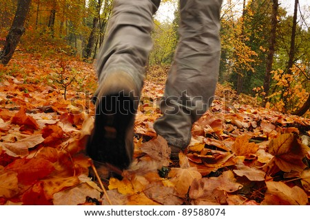 Man hiking in the woods in Autumn - stock photo