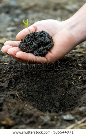man holding a handful of earth with a young green shoots. - stock photo