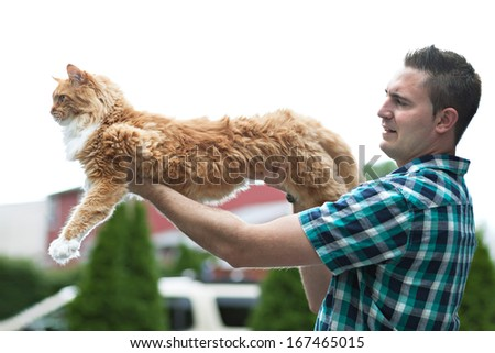 Man holding his cherished purebred Maine Coon cat outright to show his size.  Shallow depth of field. - stock photo