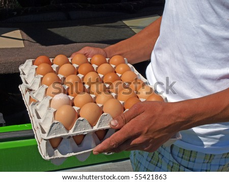Man holding packing with brown hen eggs - stock photo