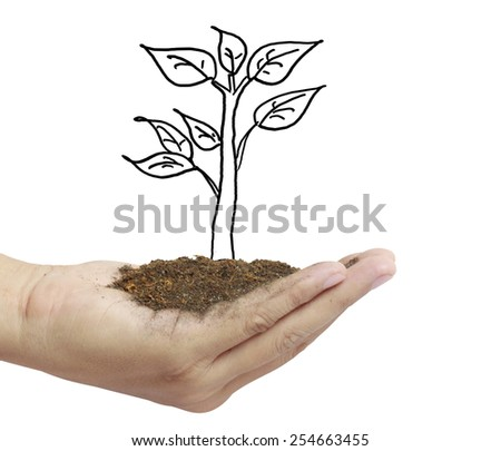 Man holding plant in hand - stock photo