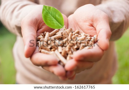 Man holding wooden pellets - stock photo