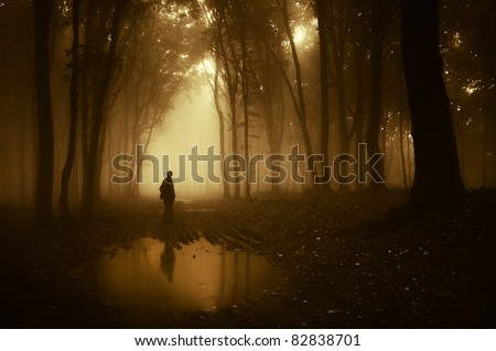 man in a forest reflecting in a pond after rain - stock photo