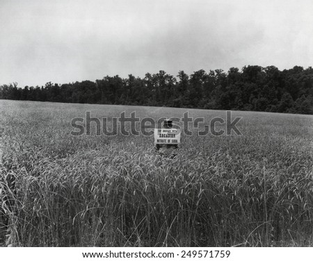 Man in a wheat field holding a sign, 'Top Dressed with Arcadian Nitrate of Soda.' 1936