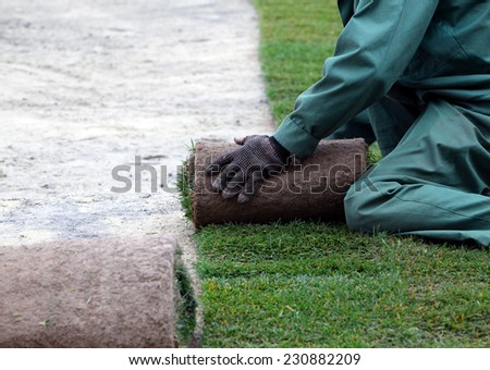 Man in green form  laying sod for new garden lawn - stock photo
