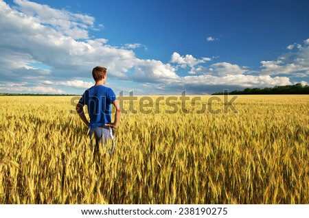 Man in meadow of wheat. Element of design. - stock photo