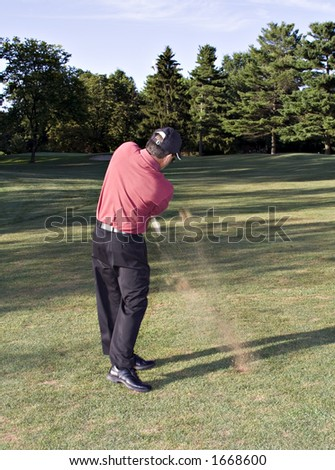 Man in mid golf drive. Action shot - turf flying.  Ball is a white blur against middle pine tree. - stock photo