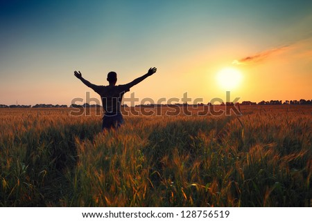 man in wheat field at sunset time - stock photo