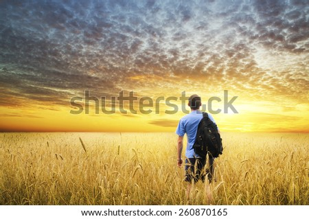 Man in yellow wheat meadow on sunset. - stock photo