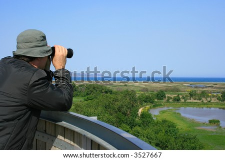 Man looking through binoculars at a natural wetland area (Aiguamolls Emporda, Spain) - stock photo