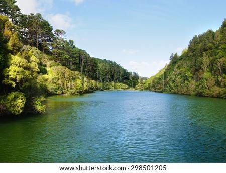 Man made lake in Zealandia, a botanical  garden and wildlife refuge in Wellington, New Zealand - stock photo