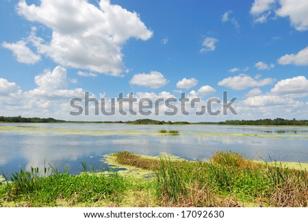 Man-made Wetlands #3- Orlando Wetlands Park - stock photo
